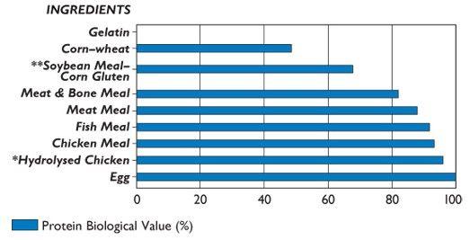 Biologická hodnota