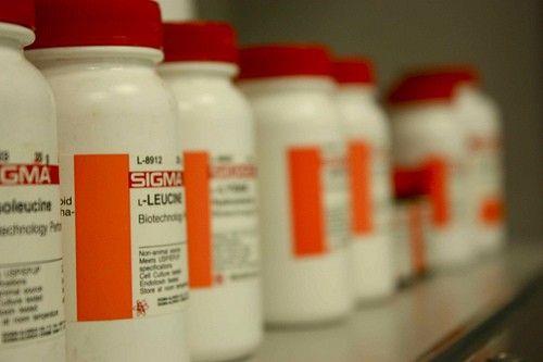 BCAA- leucin, isoleucin, valin