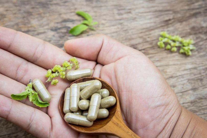 Kratom: neškodná bylinka alebo zneužívaná legálna droga?