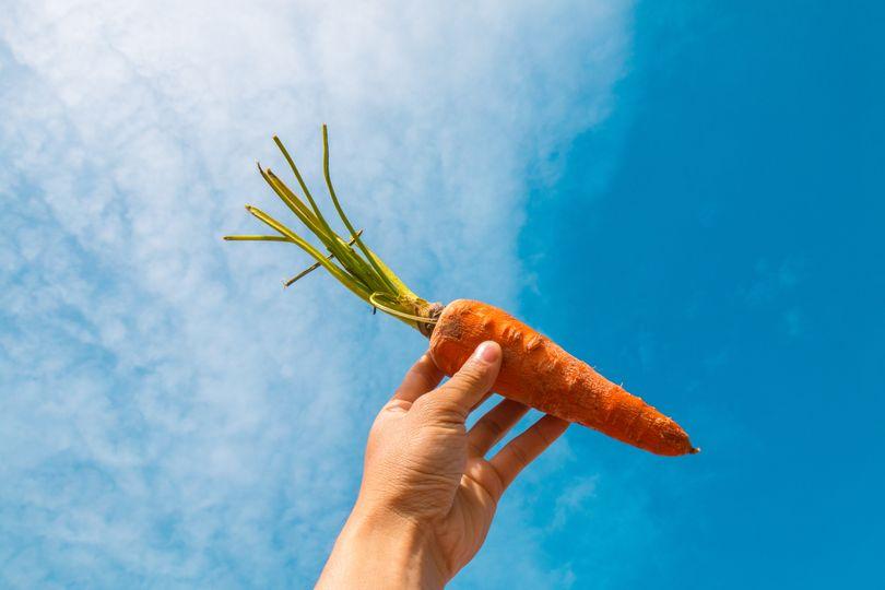 Vitamin A a beta-karoten: Co jíst, abychom měli v jídelníčku tuto nerozlučnou dvojici?